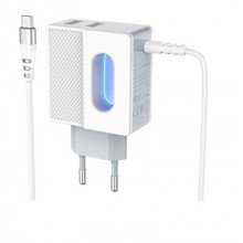 Зарядное устройство Hoco C75 Micro USB